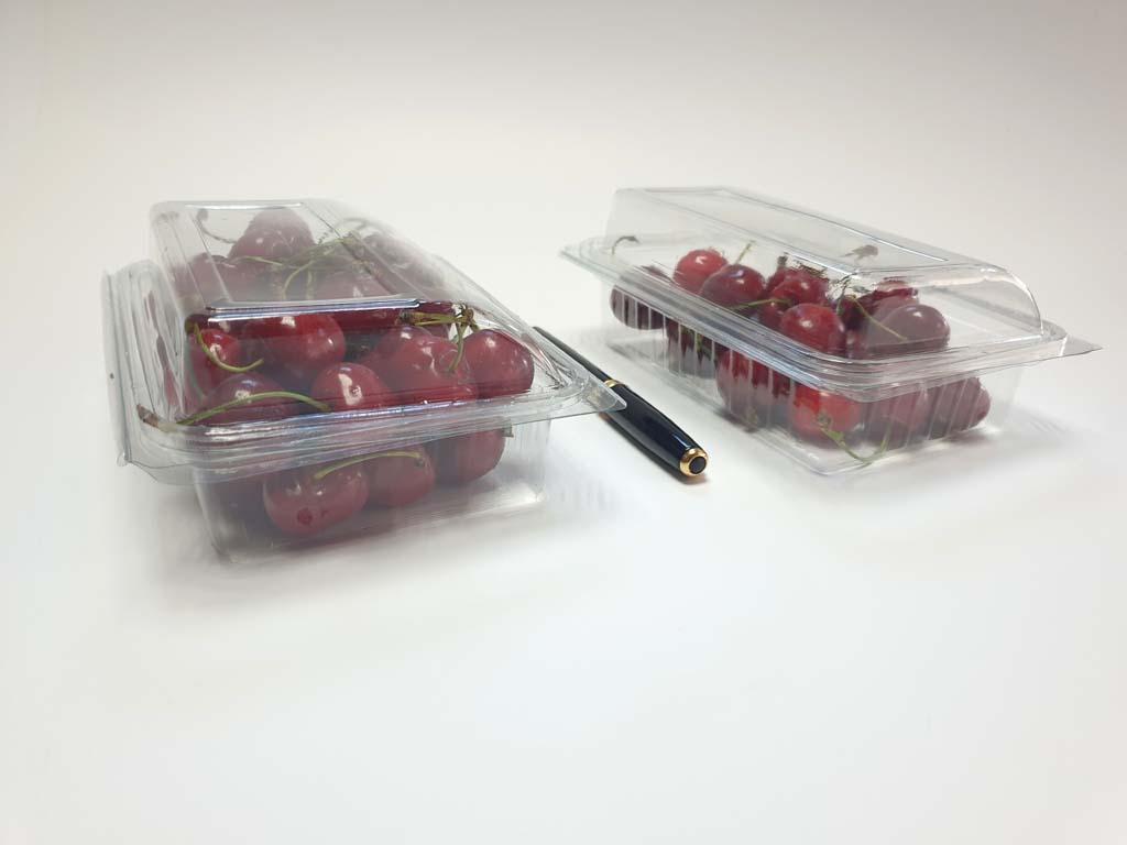 4097 - bacarat fructe si legume (5)