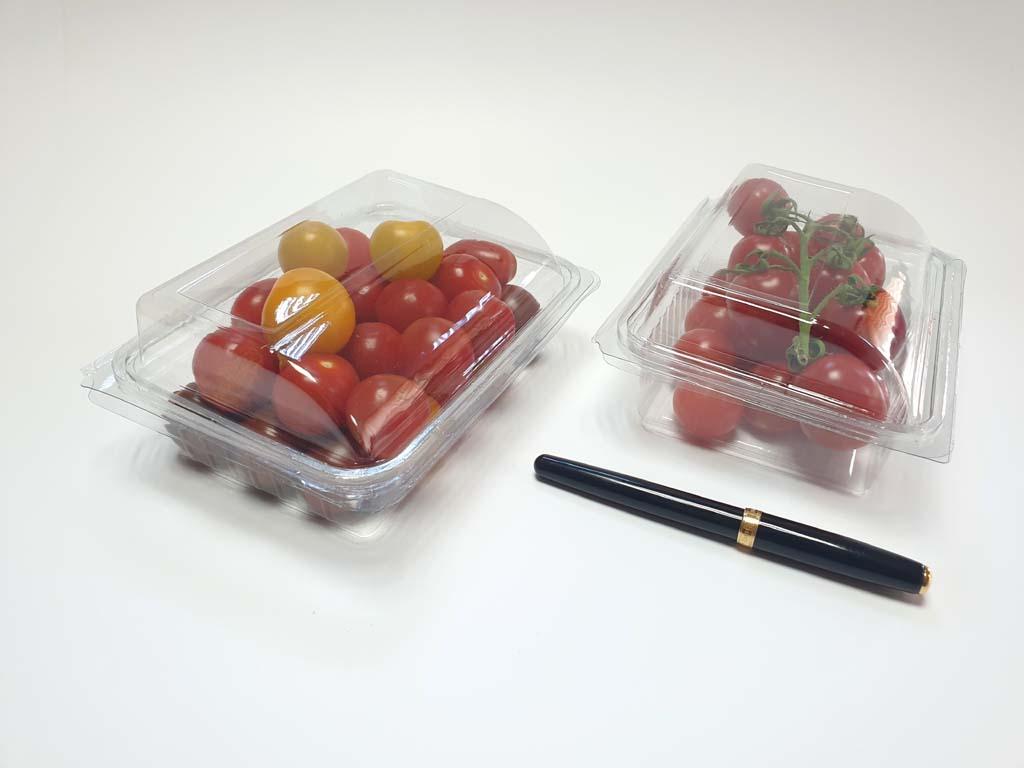 4097 - bacarat fructe si legume (7)