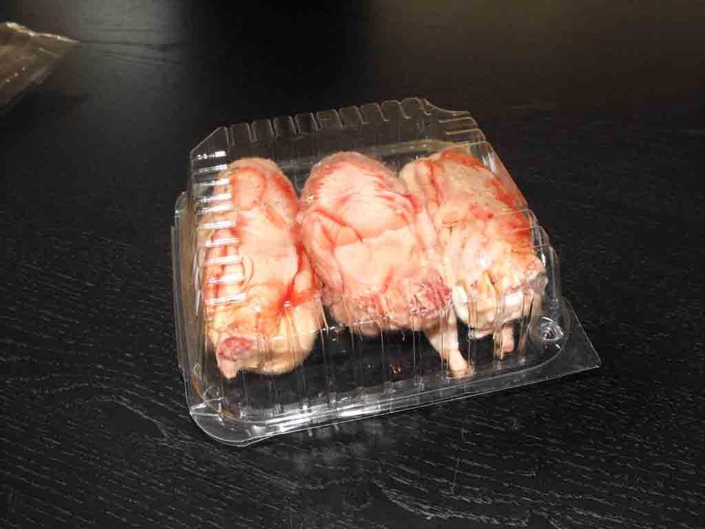 Caserola din plastic pentru pui prepelite (1)