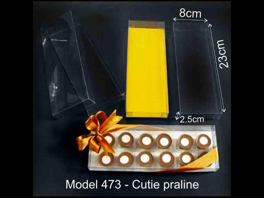 Chese plastic pentru 12 praline (4)
