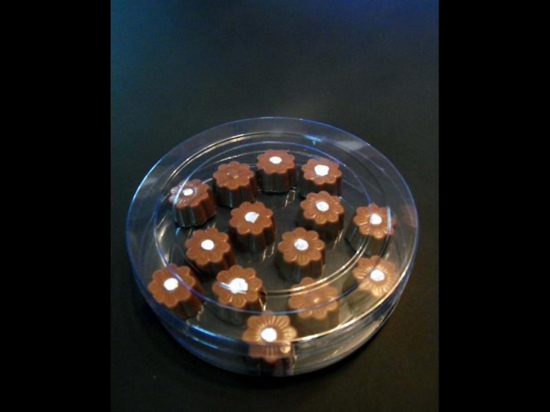 Cilindru din plastic pentru bomboane floare (7)