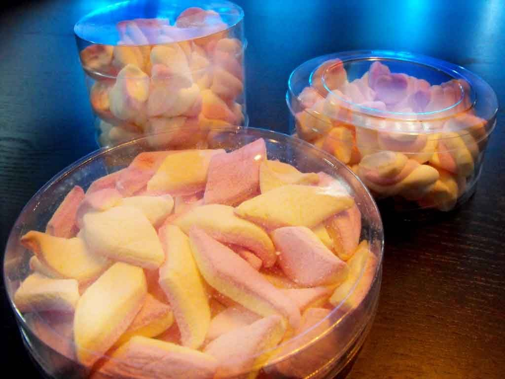 Cilindru din plastic pentru marshmallow (2)