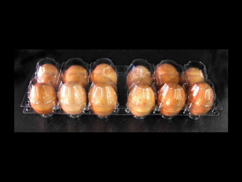 Cofraje oua gaina 12 compartimente 6x2 (1)