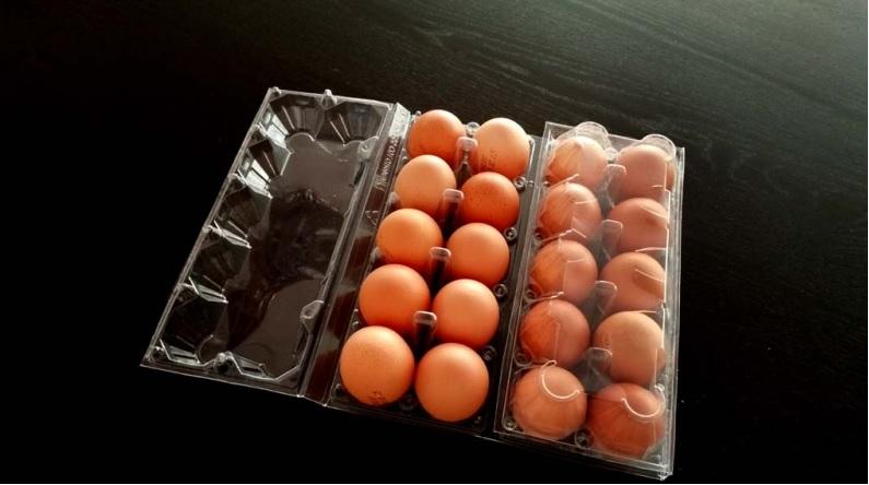 Cofraje oua gaina 20 compartimente (1)