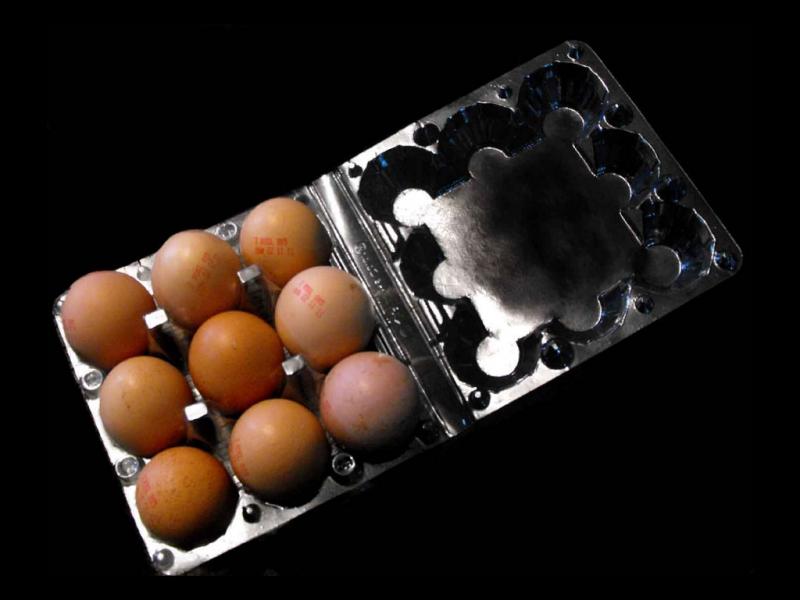 Cofraje oua gaina 9 compartimente (2)