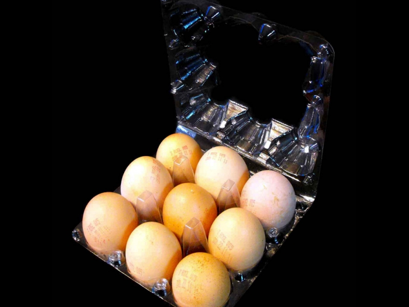 Cofraje oua gaina 9 compartimente (3)