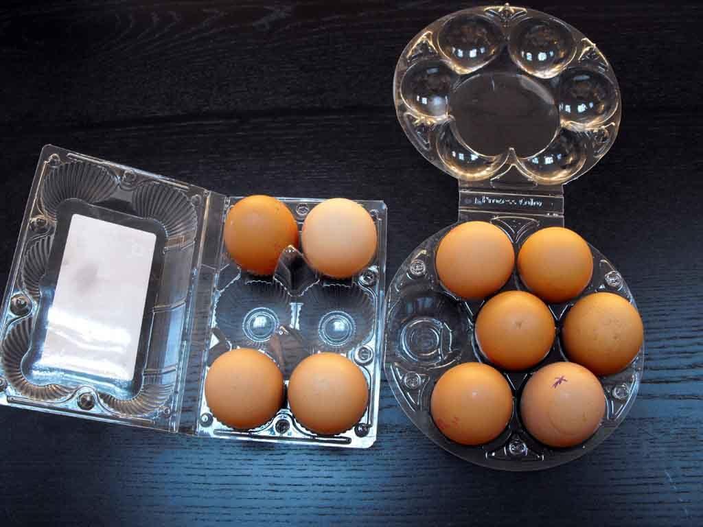 Cofraje oua gaina XL (1)