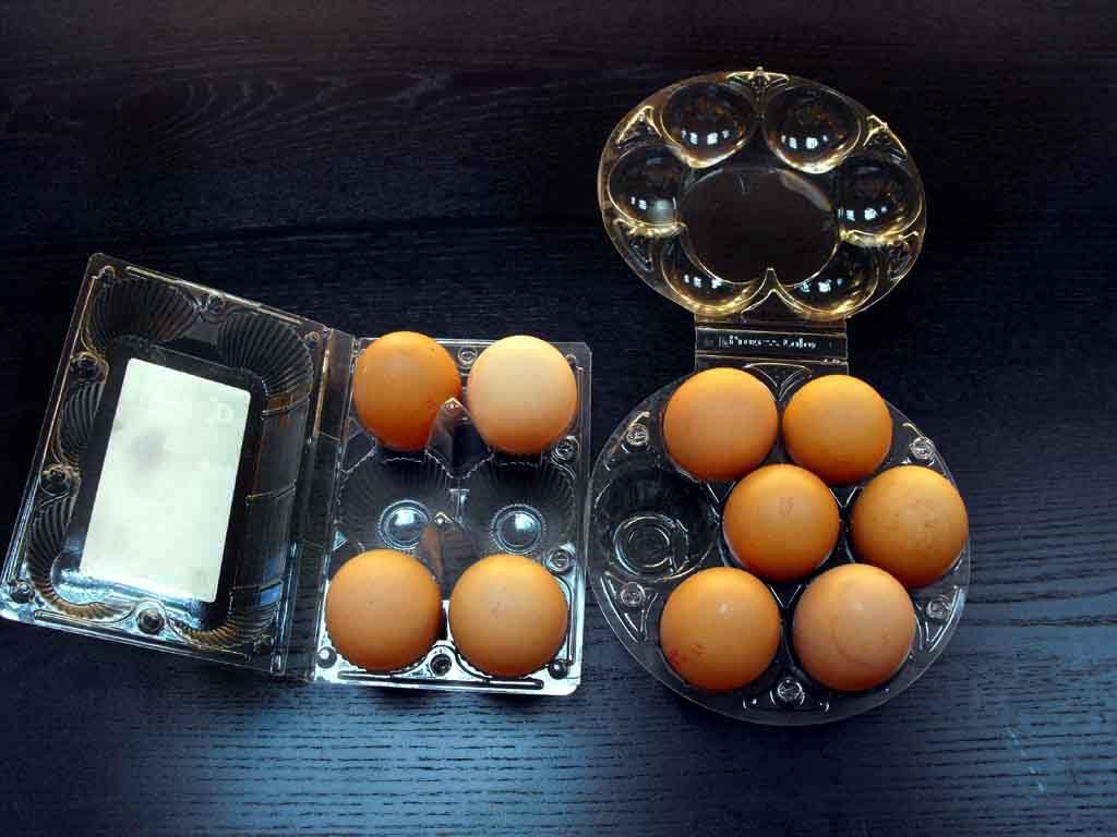 Cofraje oua gaina XL (3)