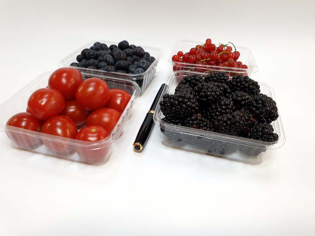 4089 - afine, coacaze, afine, rosii cherry (3)